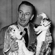 Walt Disney, cinema cartoon film king, introduced the two stars of new full length film The Lady and the Tramp, during the press conference he gave at Dorchester Hotel, July 7, 1953, London, England. (AP Photo)